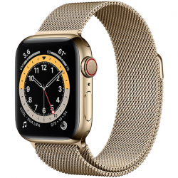 AW Series 6 40mm (M06W3) GPS + Cellular Gold Stainless Steel Case with Gold Milanese Loop