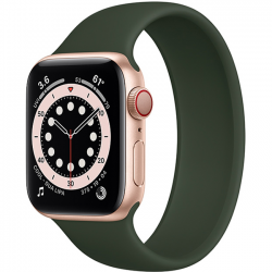 Apple Watch Series 6 40mm GPS + Cellular Gold Aluminum Case with Cyprus Green Solo Loop